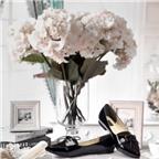 Giày búp bê đa phong cách từ Dolly