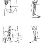 Xoa bóp bấm huyệt hỗ trợ điều trị viêm tuyến tiền liệt mạn tính