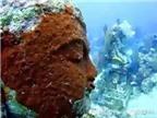 Kinh ngạc với ngôi đền bí ẩn dưới đáy biển