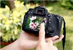 Những mẹo nhỏ trong lựa chọn máy ảnh du lịch và nhu cầu gia đình