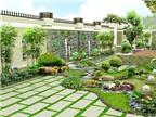 Chọn cây cảnh hợp phong thuỷ để trồng trong nhà