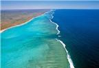 Bờ biển Ningaloo - rặng san hô gần bờ đẹp nhất thế giới