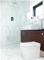 Phòng tắm sang trọng với phụ kiện độc đáo