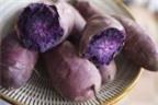 Ăn khoai lang tím khiến tế bào ung thư tự hủy diệt