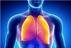 Phương pháp phòng ngừa bệnh lao phổi