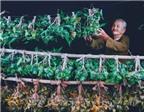 Ẩm thực Việt qua ảnh