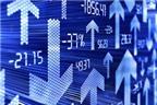 5 sai lầm thường gặp ở nhà đầu tư ít kinh nghiệm