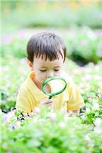 Chăm sóc dinh dưỡng cho bé 1-2 tuổi