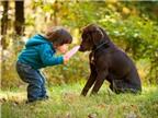 Phát hiện thú vị: Loài chó cũng biết ghen giống con người