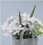 Cách làm hoa giấy giản đơn mà tinh tế