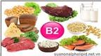 7 nguồn thực phẩm dồi dào vitamin B2
