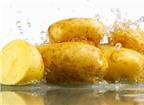 16 cách làm đẹp với khoai tây