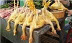 Phát hiện thêm chất có thể gây ung thư dùng trong chăn nuôi