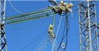 8% sản lượng điện tổn thất mỗi năm