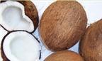 Làm thế nào để phân biệt dừa bánh tẻ, dừa già và dừa non?